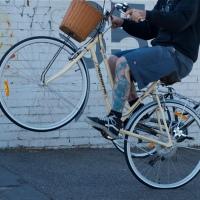 fotocycle [10] cavalinho