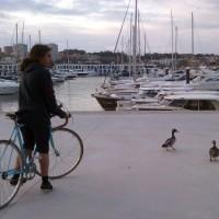 fotocycle [124] um casal de patos quantas patas tem?