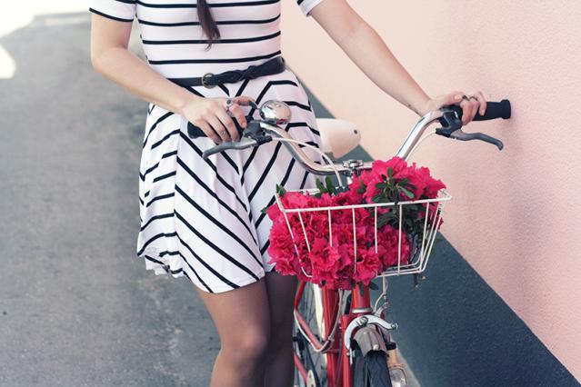 vintage bike flowers