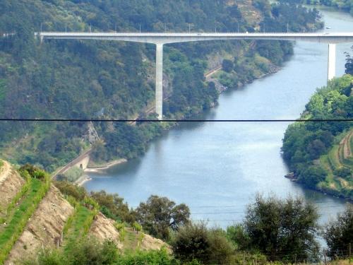 BRM Douro 11