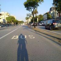 """do busílis a questão, e porque não uma """"bia berde"""" para bicicletas!?"""