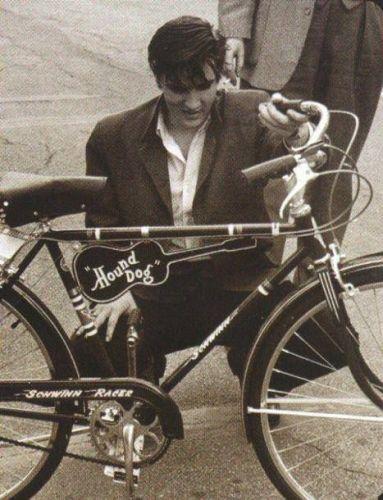 Elvis and the hound dog bike