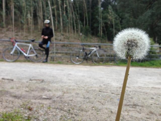 pedaladas e fotografias