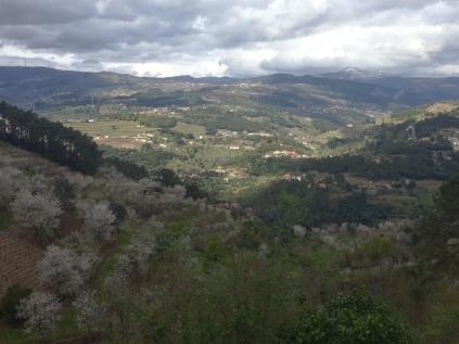 rodopiando o Douro #11