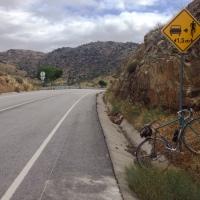 o município de Torre de Moncorvo tem pedalada
